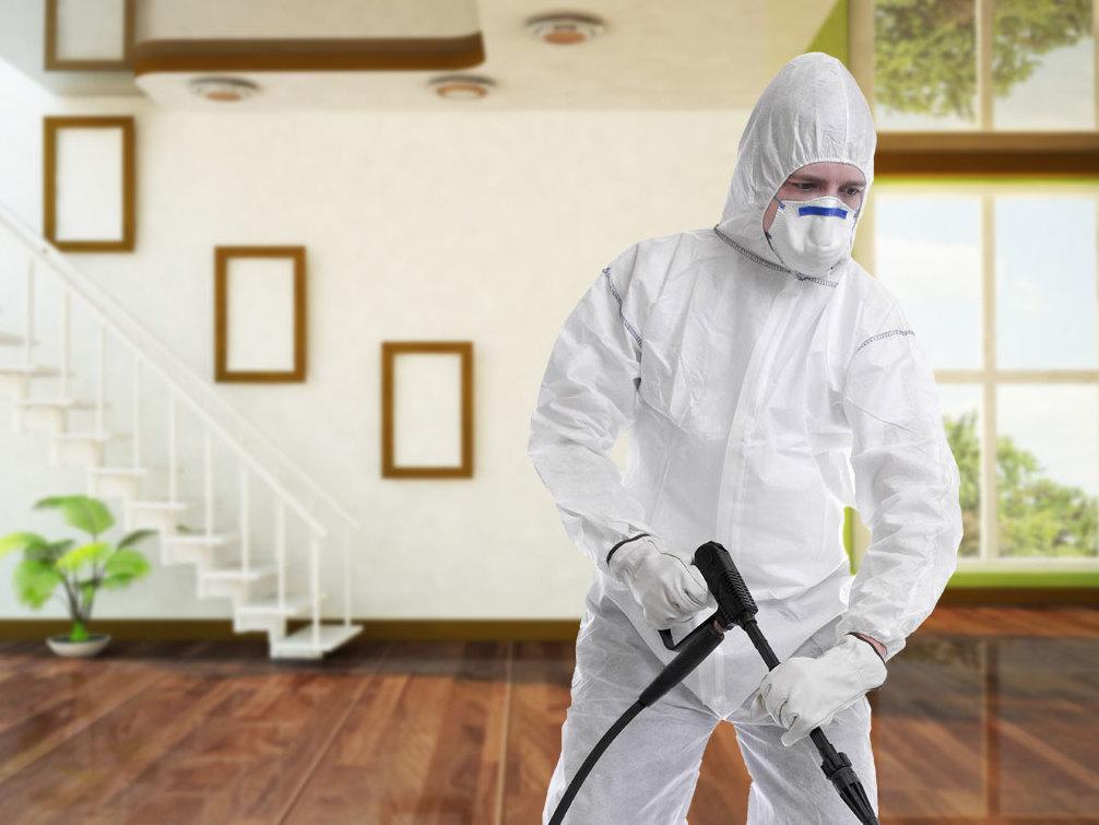 أسهل طرق مكافحة الحشرات المنزلية