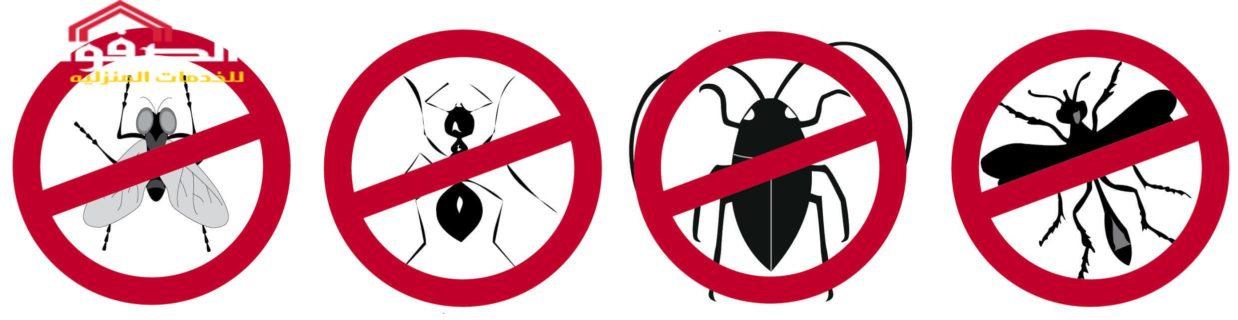 اهم طرق مكافحة الحشرات المنزلية